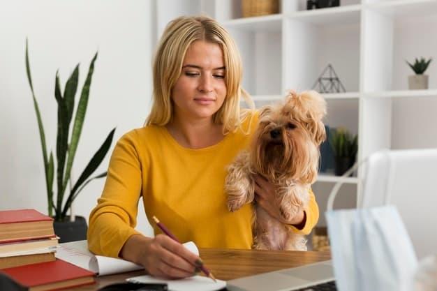 Home office com pets: 5 dicas para conciliar