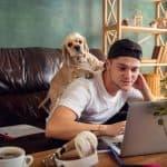 Saiba quais são os benefícios de pets no home office